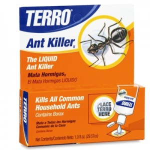 Terro can kill carpenter ants and more