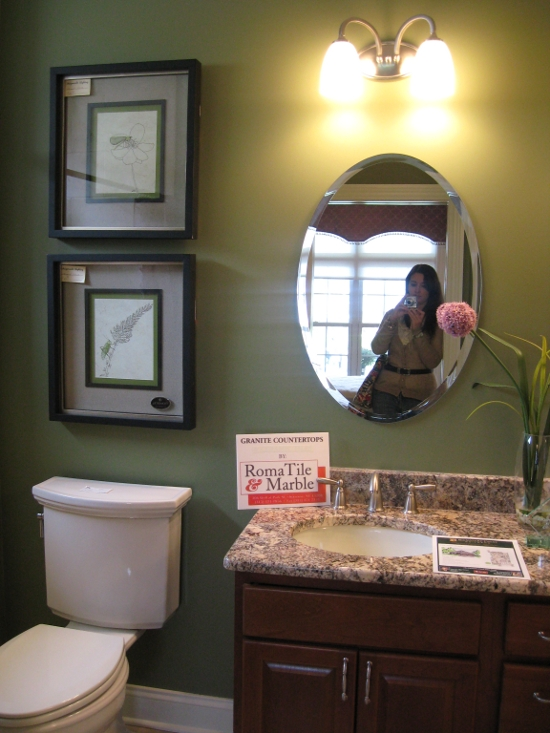 Parade Of Homes 2011 Jen Spends Less Green And Purple Bathroom