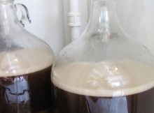 Fermenting homebrewed beer