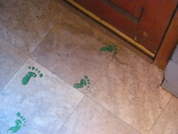 leprechaun paint footprints