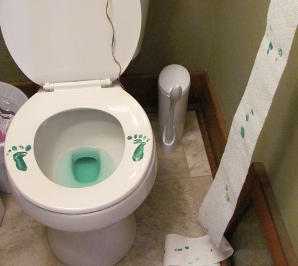 leprechaun footprints on toilet seat