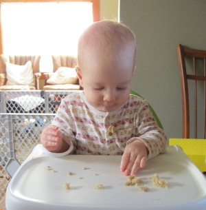 1 year old eating bread
