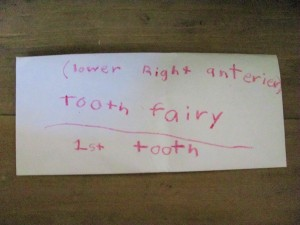 How much does the tooth fairy pay?