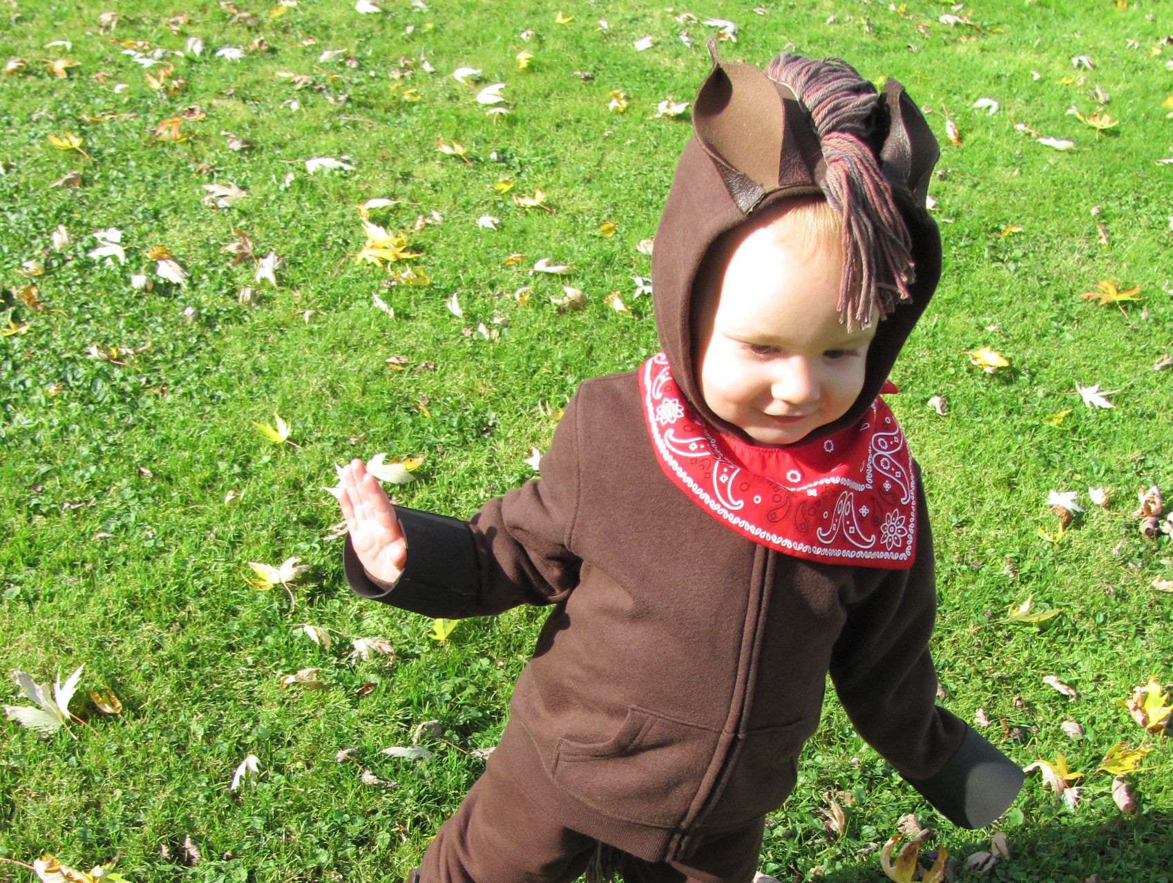 A Quick Easy And Inexpensive Diy Kids Horse Costume Jen Spends Less